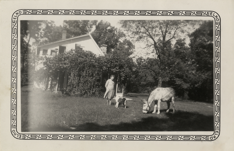 Carrie Ingalls Swanzey Dog And Donkey At Rocky Ridge Farm